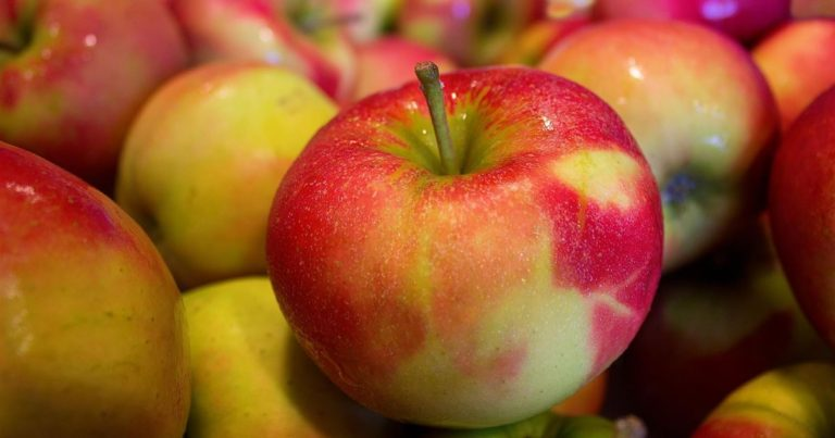 Fruktoseintoleranz – oder: ist Obst wirklich so gesund wie wir denken?