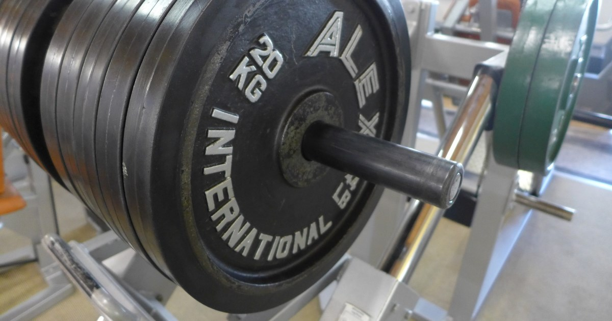 Eiweiß und Muskelaufbau