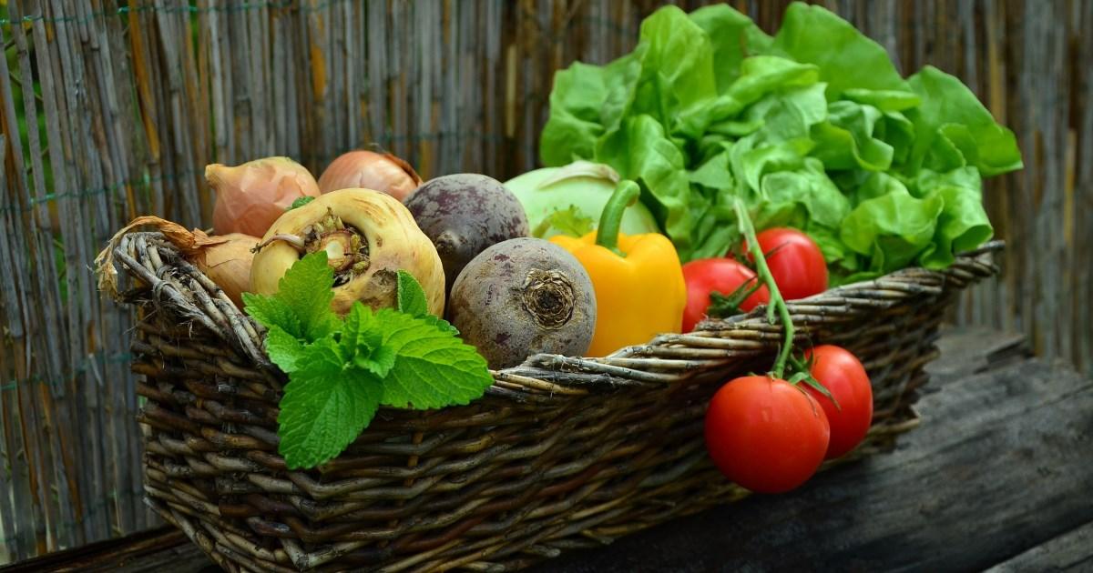 Vitamin K - schlicht und simpel